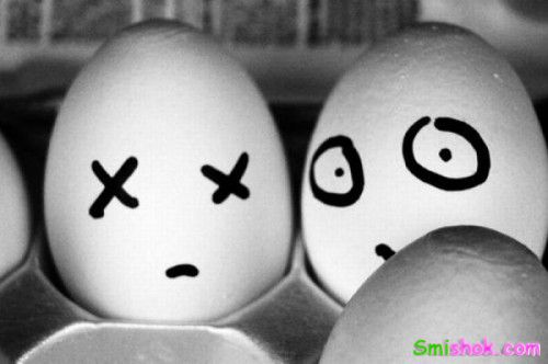 Життя яєць
