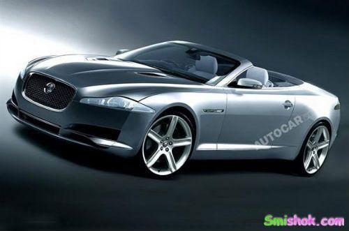 Jaguar збільшить популяцію