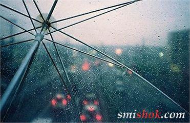 Погода на завтра: на півночі і заході країни дощі з грозами