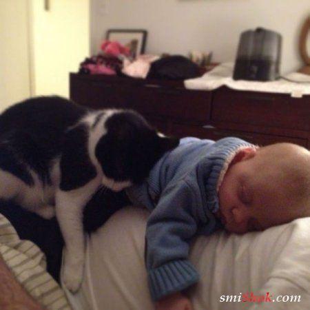 Класнючие друзяки, люди и животные
