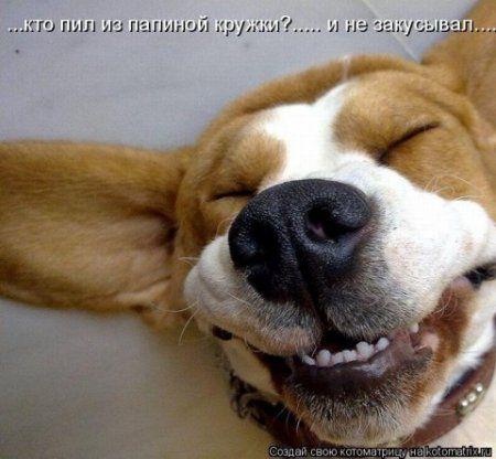 Смотрим,улыбаемся,позитивом заряжаемся!
