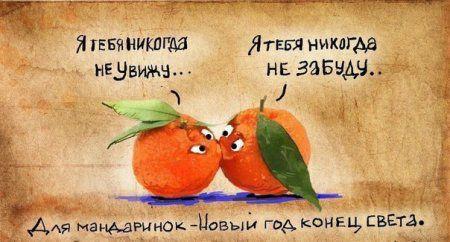 Смотри прикольные картинки, спасай мандаринки