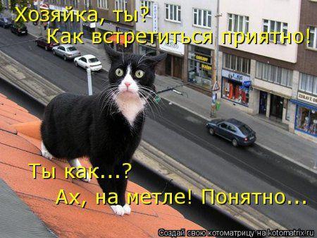 И снова котоматрицы