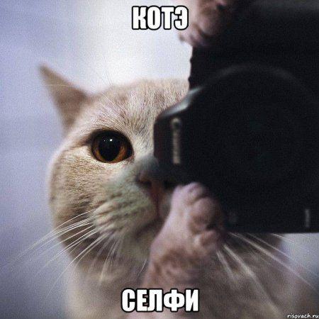 Забавные фото, смешные приколы, одним словом - пятница :)