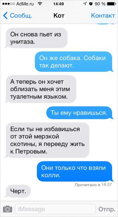 Если бы коты умели писать СМС