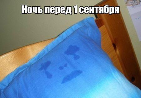 Прикольные фото в подборке, смотрим и улыбаемся