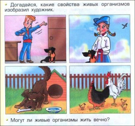 Маразмы из учебников школьных