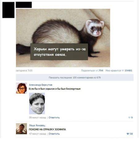 Смешные комментарии из социальных сетей (31 фото)