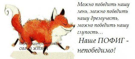 """""""Правдивые цитаты с юмором"""