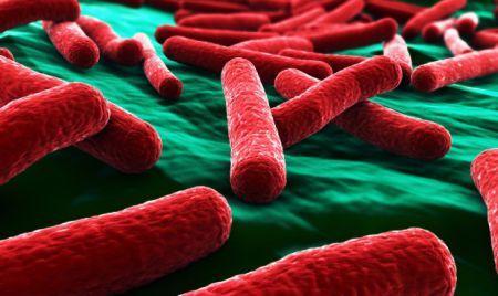 Антибиотики больше не работают: почему так случилось, и что теперь делать