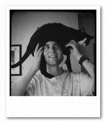 Наглые коты в подборке фото приколов