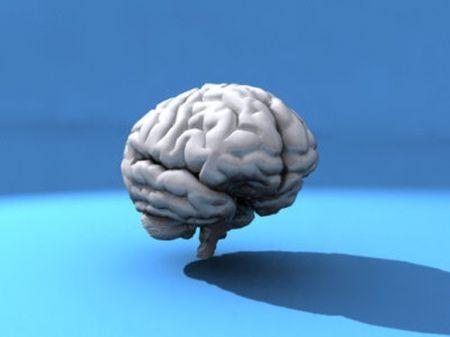 Какого возраста ваш мозг?
