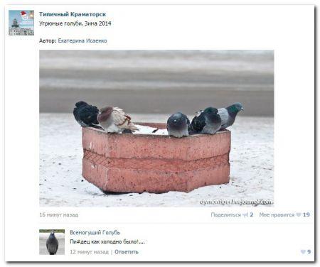 Юмор социальных сетей (40 кртинок)
