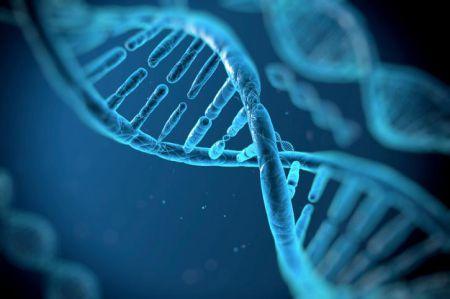 В человеке нашли 145 чужих генов, взятых у бактерий и вирусов
