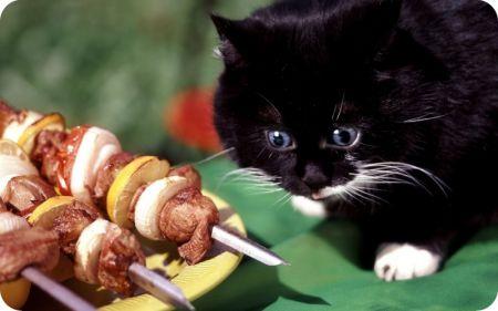 10 неожиданных маринадов для самого вкусного шашлыка