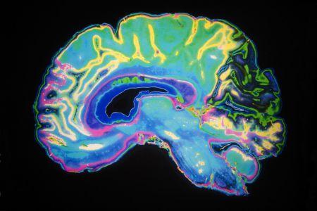 7 ошибок, которые ежедневно совершает ваш мозг, и как их исправить