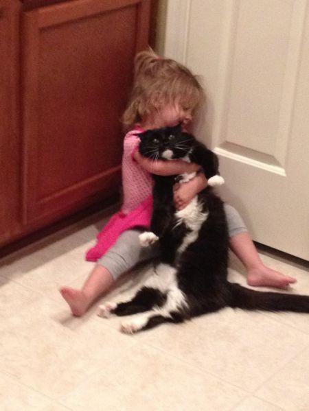 Животные которые сыты вашими обнимашками