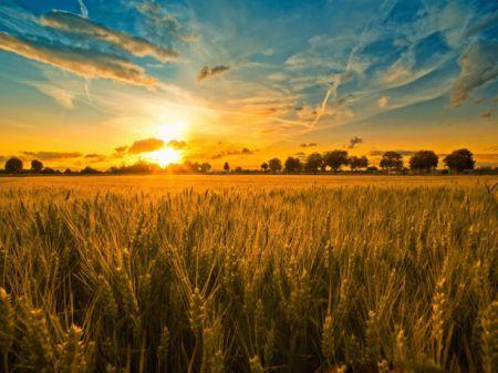 10 фактов, которых вы не знали о летнем солнцестоянии