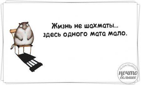 """""""Правдивости"""" с юмором"""