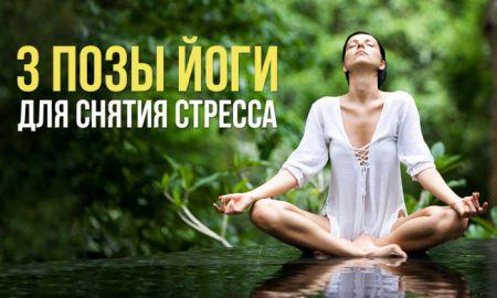 3 простые позы йоги для снятия стресса