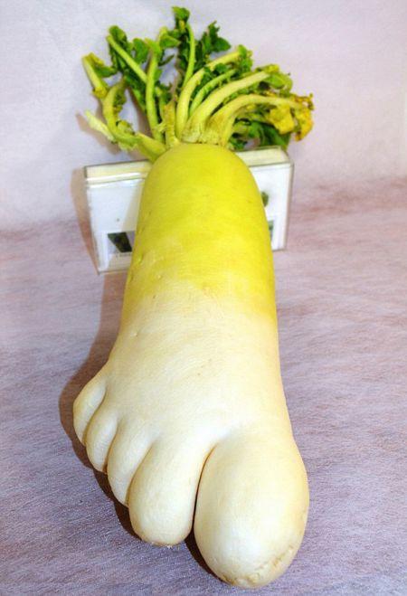 Подборка веслых плодов