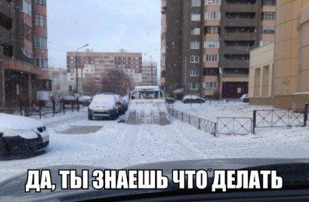 Авто приколы, давай поехали (15 фото)