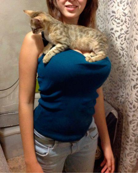Тот момент когда ты жалеешь что ты не Кот, или другое животное