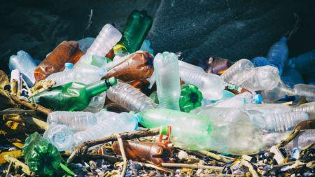Найдена бактерия, поедающая пластик (ПЭТ)!