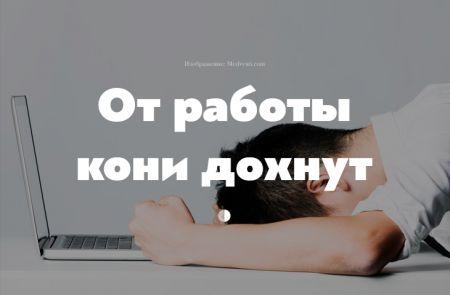 Работать более 8 часов в день вредно. Доказано учеными