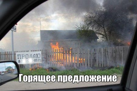 Фото приколы (27 фото)