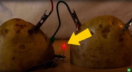 Светящаяся картошка: обалденный опыт, который можно провести вместе с детьми