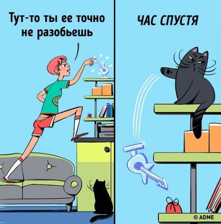 Закон кошачьего тяготения и еще 15 вещей