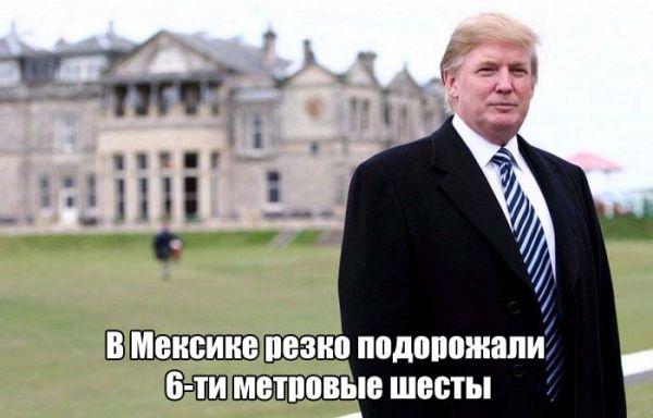 Смешные картинки на тему победы Дональда Трампа