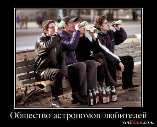 Демотиваторы и ничего лишнего (20 шт)