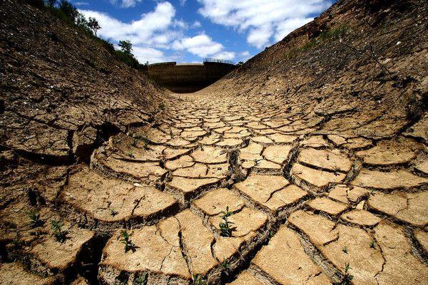 Ученые: Земле грозит глобальная засуха