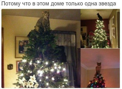 Про Новый год в картинках