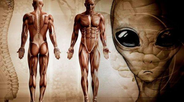 10 главных причин почему мы до сих пор не встретили инопланетян
