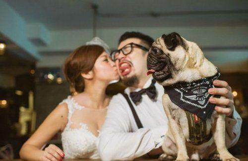 Смешные фото со свадебных гуляний (29 фото)