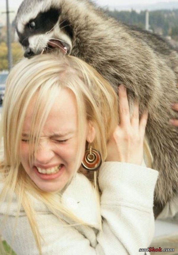 """Неравный """"бой"""" или просто девушки и зверюшки"""