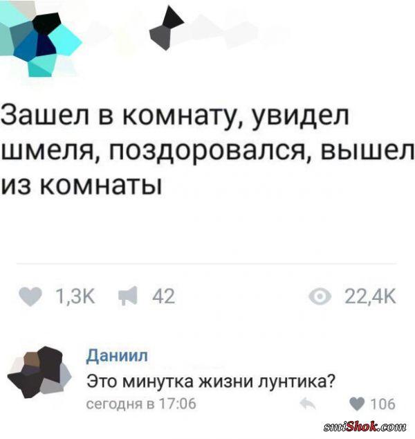 Смешные комментарии из соцсетей от 23 октября 2017