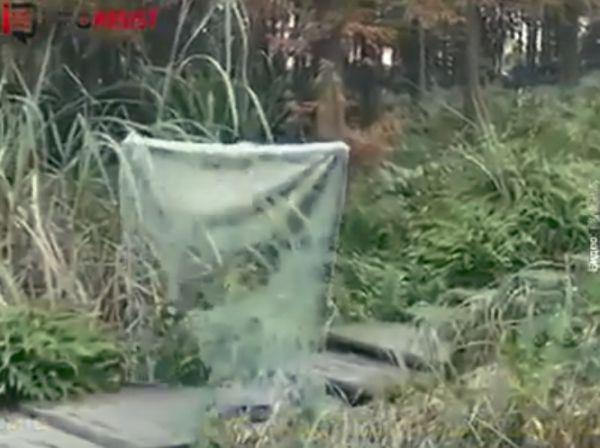 Человек-невидимка или маскировка 80 lvl