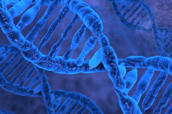 У человека обнаружили новые клетки странной формы