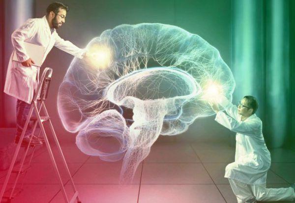 Тайны человеческого мозга, о которых вы и не подозревали