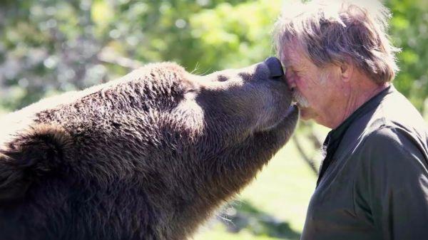 3 невероятные истории дружбы человека и животных