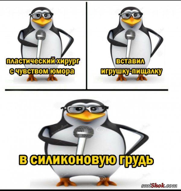 Стендапы от Пингвина (25 фото)